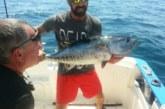 Bermeo TWC aúna pesca deportiva e investigación sobre el atún rojo