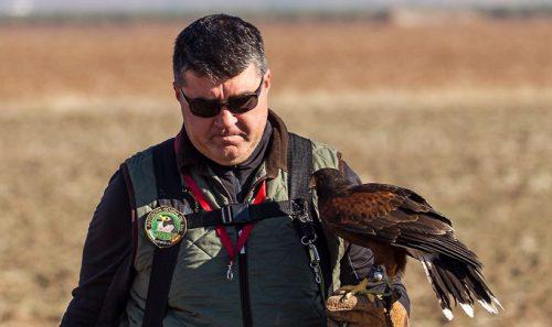 El MINCOTUR confirma que se podrán seguir exportando aves de cetrería