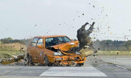 El jabalí y el corzo son los animales que más accidentes provocan