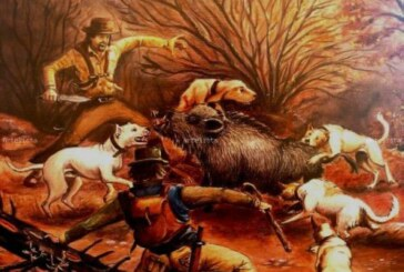 La muerte de un valiente junto a sus perros. Relato de caza