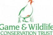 La Fundación Artemisan y The Game & Wildlife Conservation Trust colaborarán en materia de investigación