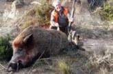 Ley de caza impuesta por PSOE y Podemos en CLM a análisis