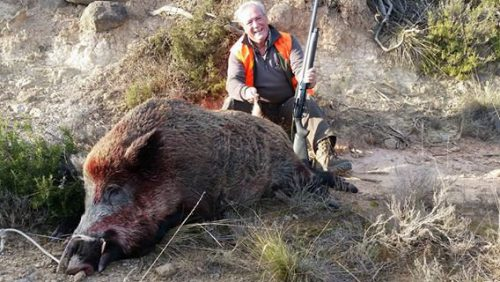 La RFEC continúa trabajando con el MAPA para prevenir la llegada de la peste porcina africana a España