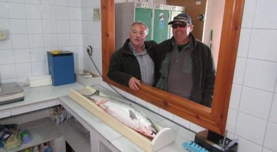 Pescado el Camapanu de Asturias (+ vídeo captura)
