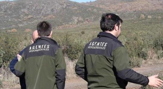 Álava mejora la tramitación de sanciones de caza, investigadas por Fiscalía