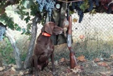 La caza en España emplea a 187.000 personas y tiene un impacto económico de 6.475 millones de euros
