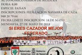 Dia 27 de mayo. Campeonato de Navarra de Perros de Muestra