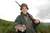 El sector cinegético rechaza de plano una posible moratoria de la caza de la tórtola