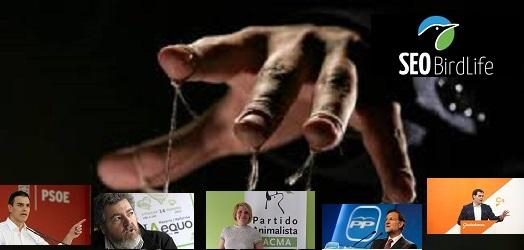 ¿Cómo han conseguido los ecologistas cerrar el silvestrismo y la propuesta de la moratoria tórtola en España? Estas son mis respuestas