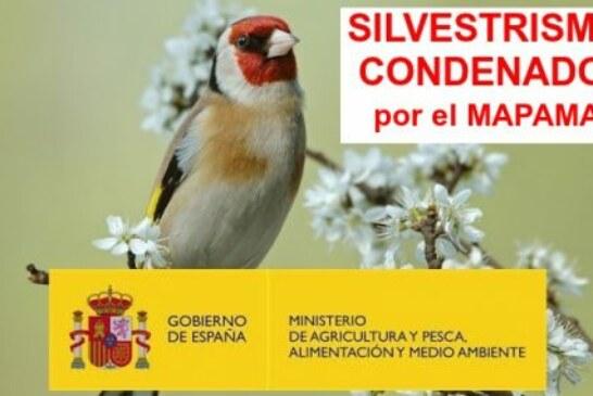 El Gobierno de España condena al silvestrismo