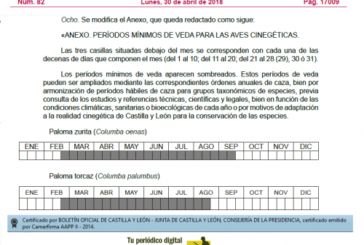 El periodo mínimo de caza de la paloma torcaz en Castilla y León será del 20 de agosto al 20 de febrero