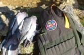 Castilla y León autoriza la caza de torcaces y zorzales hasta el 20 de febrero