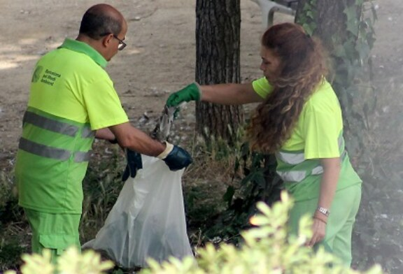 Se mueren las tórtolas turcas en Barcelona por un virus