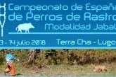 XXVI Campeonato de España de Perros de Rastro, modalidad Jabalí