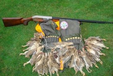 Recomendaciones para preparar la caza en esta media veda