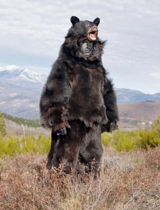 Entre las festividades relacionadas con el oso y el fin del invierno destacan hoy día las de la zona pirenaica (Béarn, Navarra, Cataluña o Rosellón), celebradas generalmente el día de La Candelaria (2 de febrero).