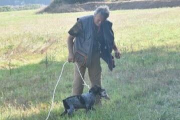 El éxito de un método que revolucionó el adiestramiento del perro de caza: Los secretos de Keranlouan