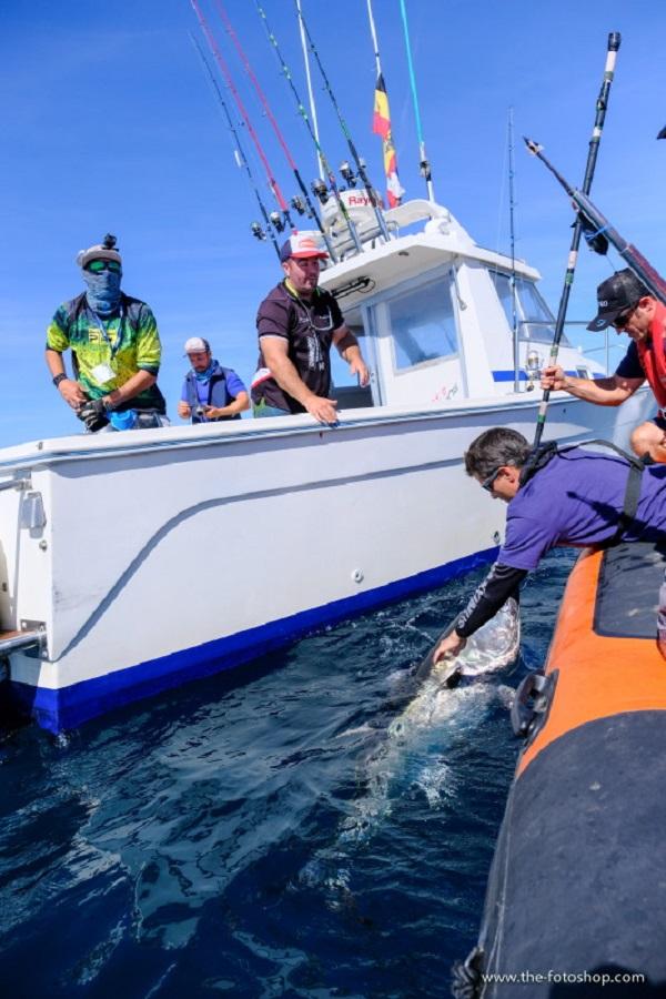 Balance de las I Jornadas de marcaje Bermeo Tuna Tagging Race 2018