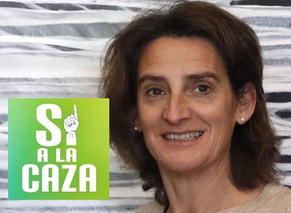 Carta abierta a Teresa Ribera – Luis Fernando Villanueva