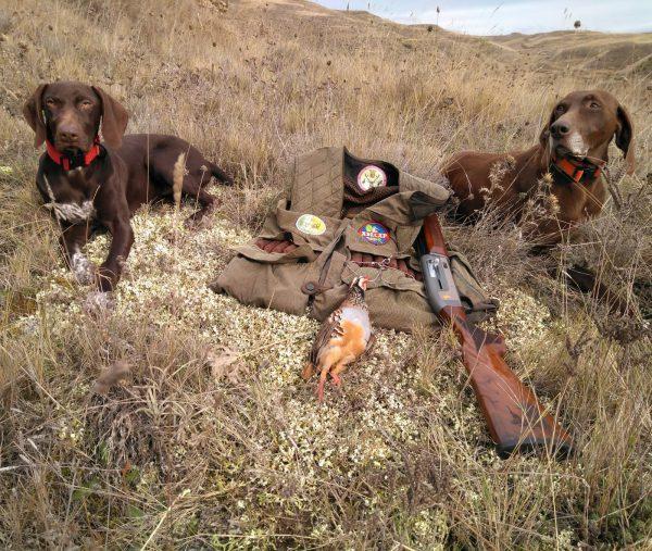 En defensa de las competencias forales y de los derechos de los cazadores
