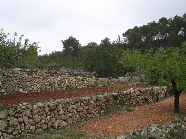 Muros de piedra realizados por cazadores, Patrimonio Cultural