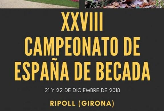 XXVIII Campeonato de España de Becadas
