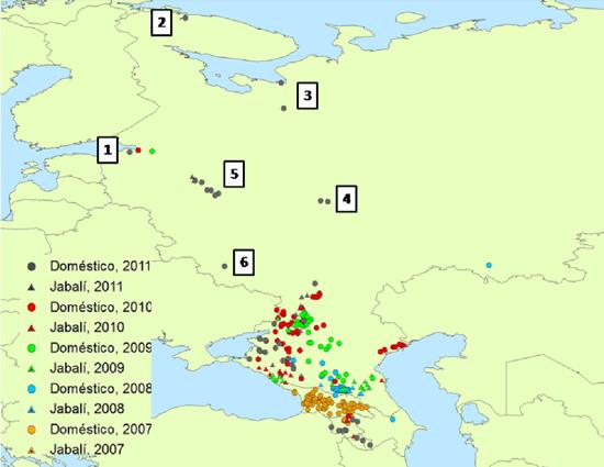 Fig. 1: Brote de PPA ocurridos entre 2007 y el 7 de Noviembre de 2011 en Rusia y los países caucásicos (Fuente: elaboración propia con datos de la Organización Mundial de Sanidad Animal, 2011).