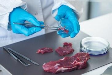 Estudio científico avala las propiedades saludables de la carne de ciervo