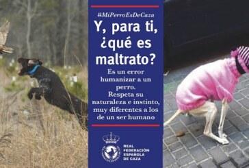 """Nueva campaña de la RFEC: """"Y, para ti, ¿qué es maltrato animal?"""" (+vídeo)"""
