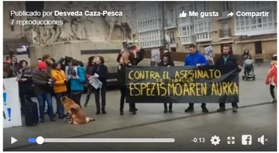 50 personas se manifiestan en Vitoria en contra de la caza con arco en Salburua (+ vídeo)
