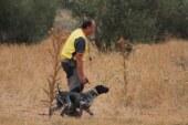 La Federación Bizkaina organiza una jornada de iniciación a las pruebas deportivas de caza