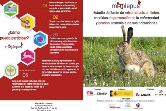 MIXOlepus: Buscando soluciones a la mixomatosis en la liebre