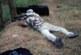 Field Target. Carabinas de aire comprimido como base de una modalidad deportiva