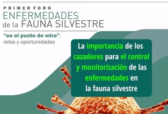 Resumen y conclusiones del Foro de Enfermedades Fauna Silvestre (+ vídeo)