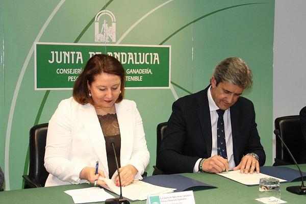 Acuerdo histórico con los cazadores tras el cambio de Gobierno en Andalucía (+ vídeo)