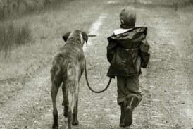 Lección de vida. ¿Por qué los perros viven menos que las personas? No os perdáis la respuesta