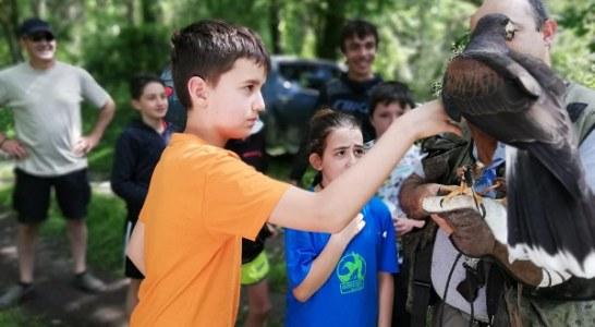 Andalucía está a punto de ser la primera comunidad que declara la caza como Bien de Interés Cultural