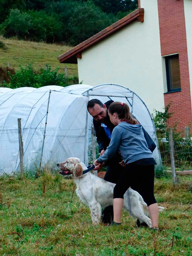 La sociedad OTOIO de Ispaster fomenta el relevo generacional en su Concurso de Perros de Muestra