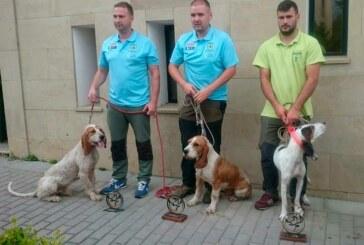El gallego Michael Otero y 'Chacho' se imponen en el XXVII Campeonato de España de Perros de Rastro Atraillados, modalidad Jabalí