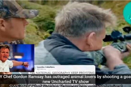 El chef Gordon Ramsay dispara en directo a una cabra, la cocina, se la come y desata una fuerte polémica