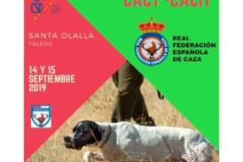 Abierta la inscripción para el Campeonato de España de Caza Práctica – Perros de Muestra 2019
