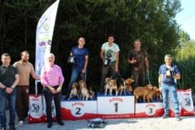 Miguel Aguión y sus beagles se proclaman campeones de la VI Copa de España de Perros de Rastro sobre Conejo