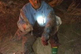Un campesino de 63 años peleó con un puma para salvar a su perro