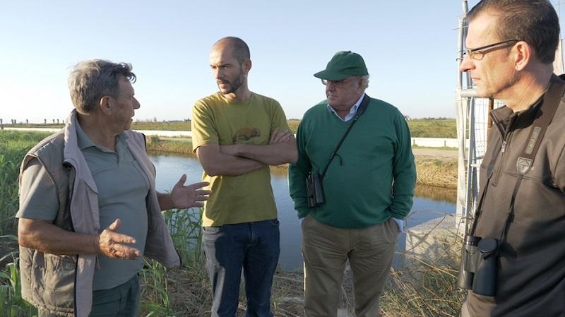 Colaboración en el censo de aves acuáticas cinegéticas del Delta del Ebro