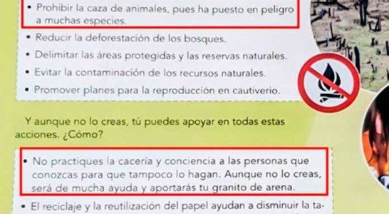 La RFEC exige también una rectificación por adoctrinar a los niños andaluces contra la caza