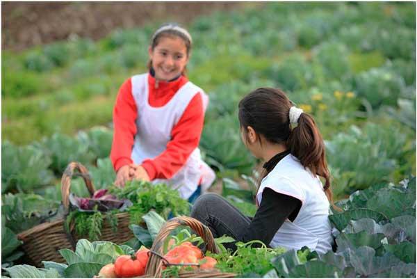 Los niños que crecen cerca de una granja desarrollan un sistema inmunológico más fuerte
