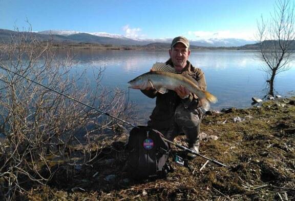 Los ríos de Gipuzkoa continúan recuperando su fauna a pesar de algún vertido ocasional