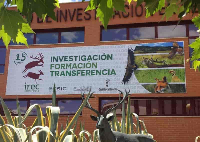 IREC reafirma su liderazgo en ciencia aplicada a la gestión de la caza
