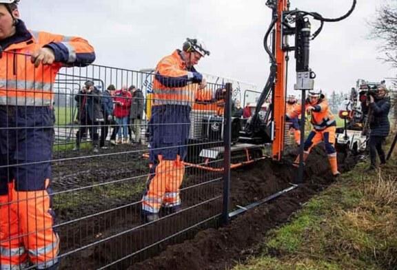 Brandenburgo levanta una valla electrificada contra la peste porcina en su frontera con Polonia