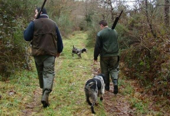 La Junta de Castilla y León quiere permitir la caza de jabalíes y ciervos con hasta 40 centímetros de nieve